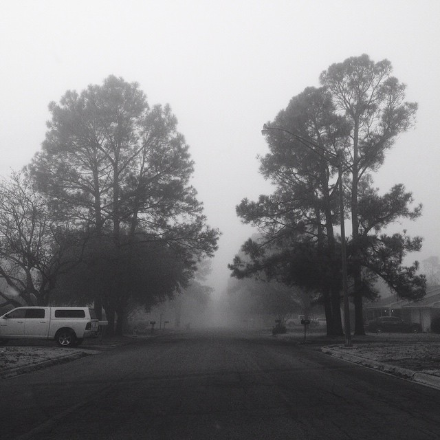 Black and white fog.