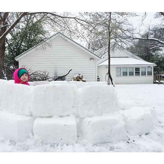 When there's enough snow that you can get started on an igloo, you know its a weird week in Texas.