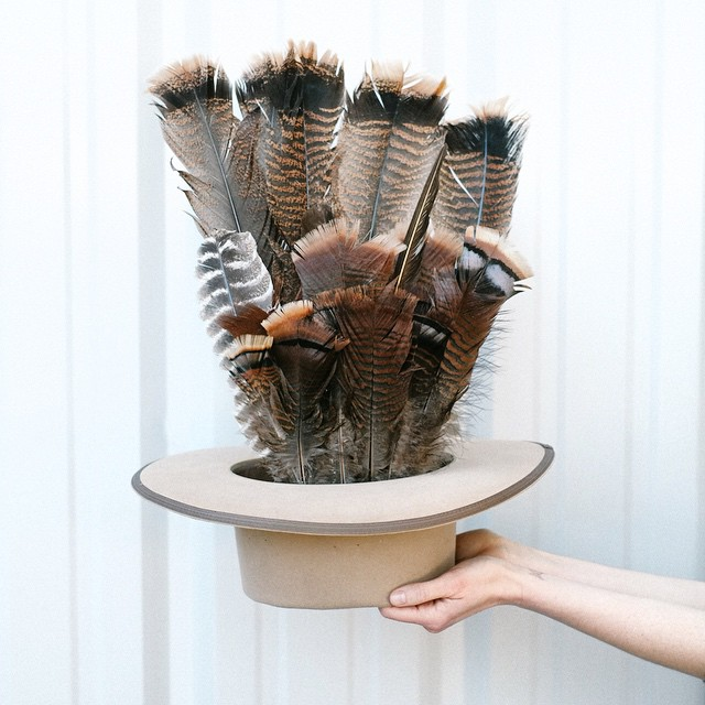 Hand-plucked turkey feathers at @WeldonsWestern.
