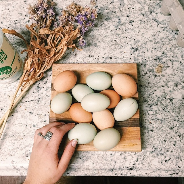 @breafkast and some fresh eggs.