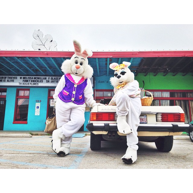 Chill rabbits on Industrial St. courtesty of @ShopDenton.