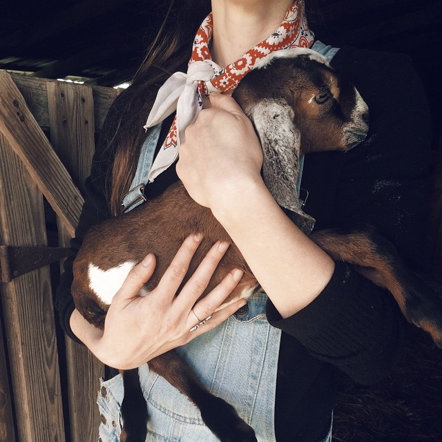 @JadeWintersee always keeps her goats close and her goatemies closer.