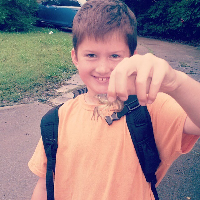 It was so rainy, crawfish could be found on your route to school. Good find, MG!