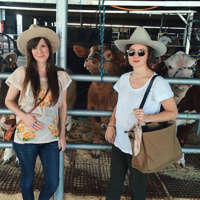 @pastranastudio et co.with some cows.