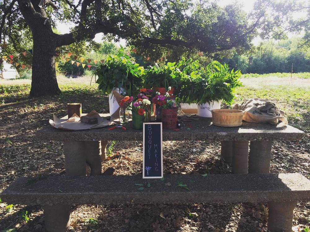 Make your own bouquet from the party at Cardo's Farm on Saturday. Image from @SeaBrookes.