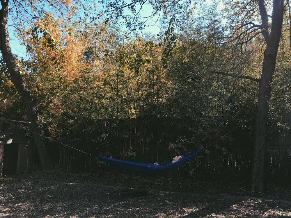 @PennyHalcyon knows how to fall, y'all. Hammock style.