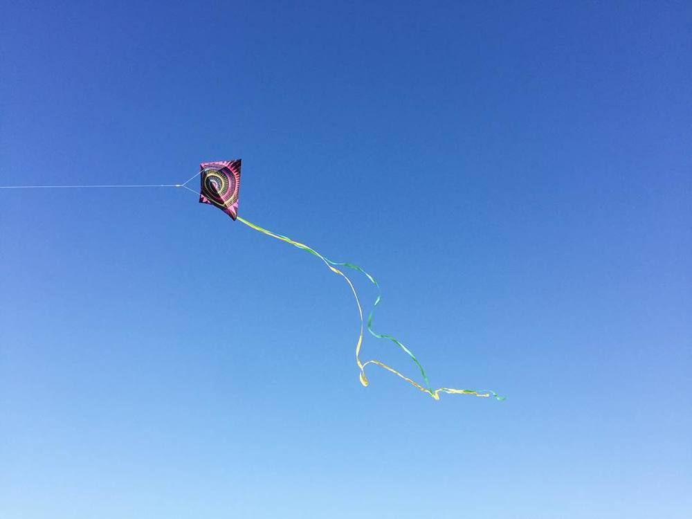 @lynzi.lucas celebrated 70-degree weather in the best possible way...with kites.