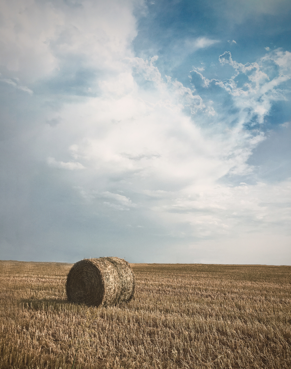 Round bales in North Denton. Photo by @__will.