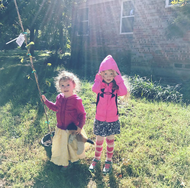 @haleyhomestead with some wee ones and a wee tree.