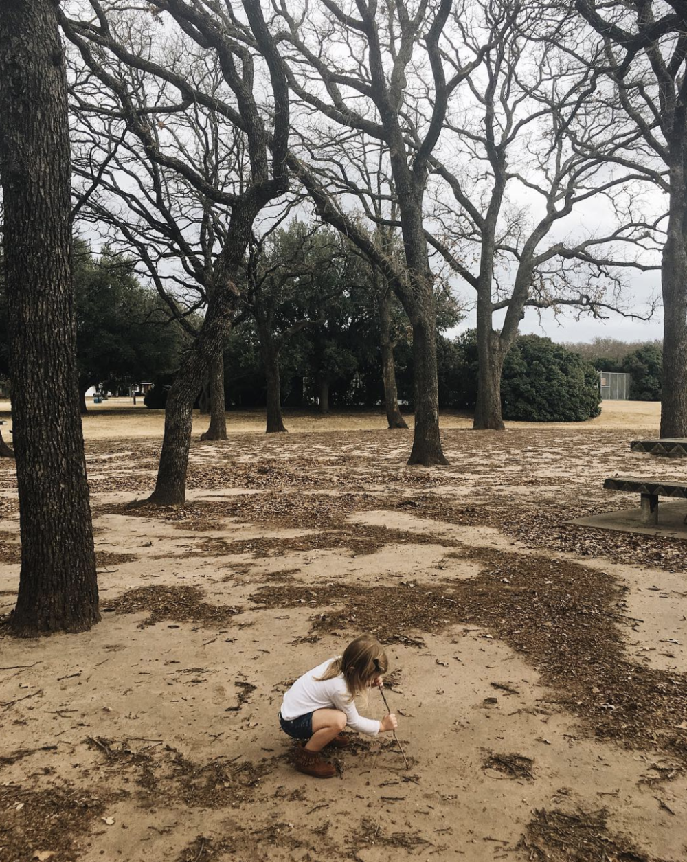 @cassiearnoldart at the park because it was December but still 70 degrees.