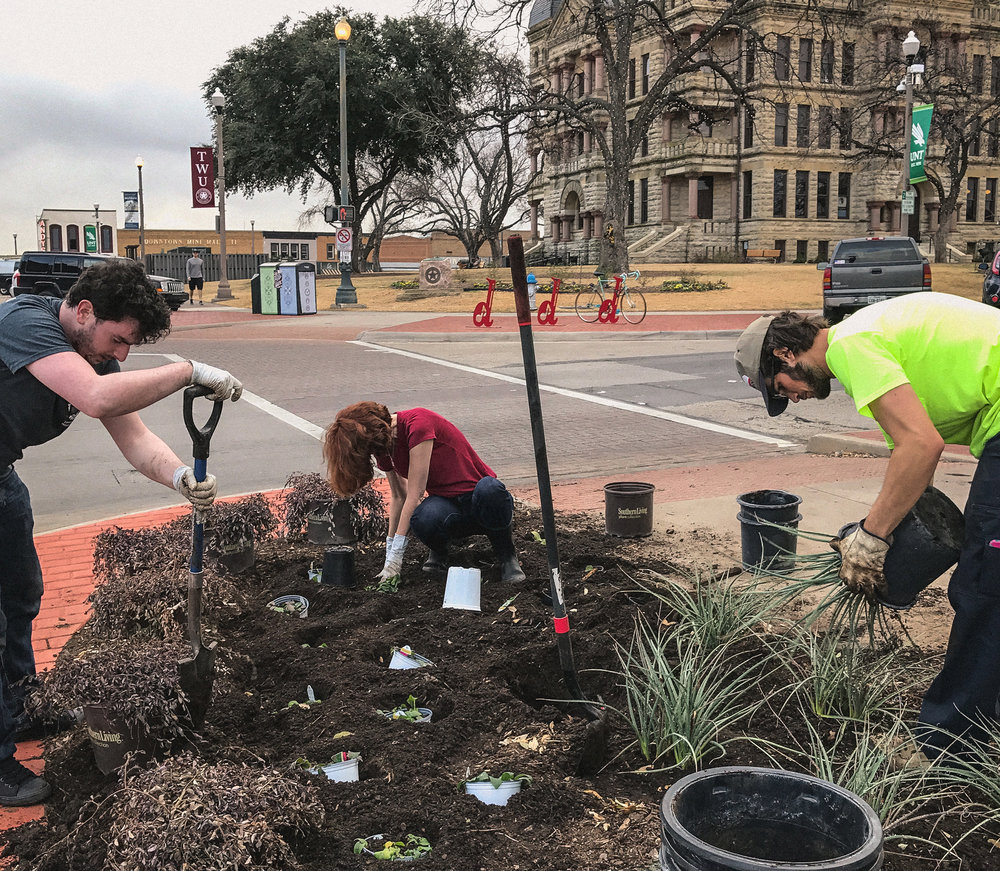 Volunteers working together to refurbish the four planters on the corners of the Denton square. Photo by Tyler Hicks.