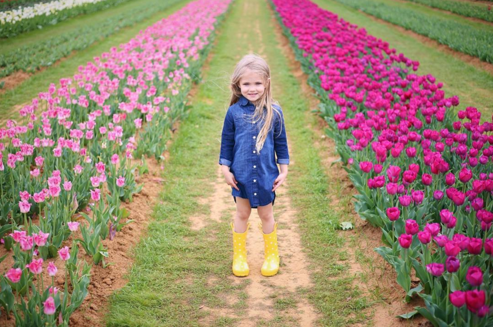 @snowberrylife at Texas Tulips.