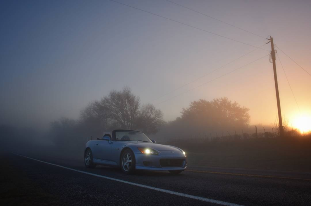 @too.soon.junior and a foggy Friday drive.