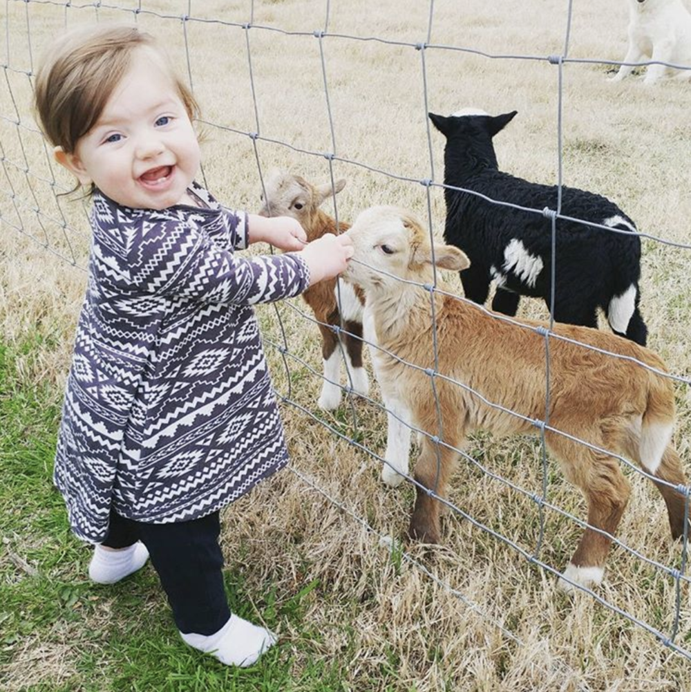 Baby humans and baby goats from @hkgregory.