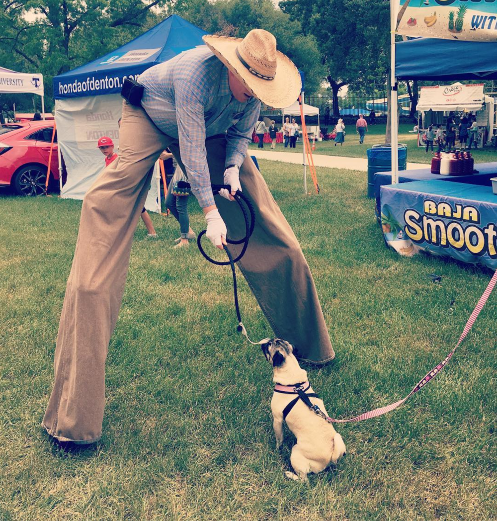 A chance meeting between a doggo and the cowboy on stilts at Arts and Jazz. Photo by @candus813.