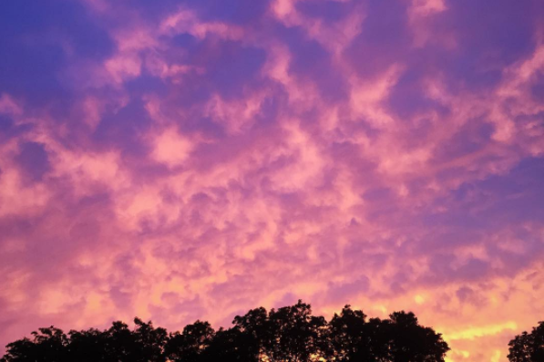 @snowberrylife got this great shot of the pink/purple, cloudy sky on Sunday at dusk. Springtime in Denton has its perks.