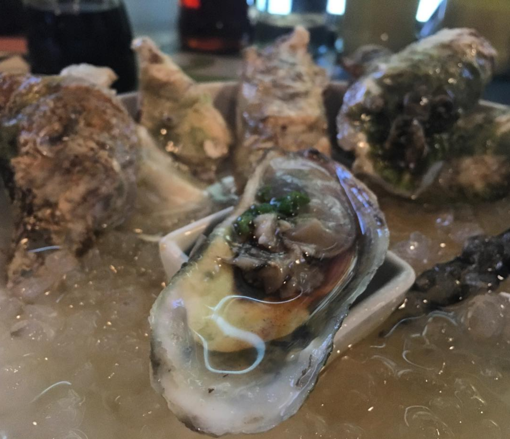 @stephiam_ent with some oysters at Komodo Loco.