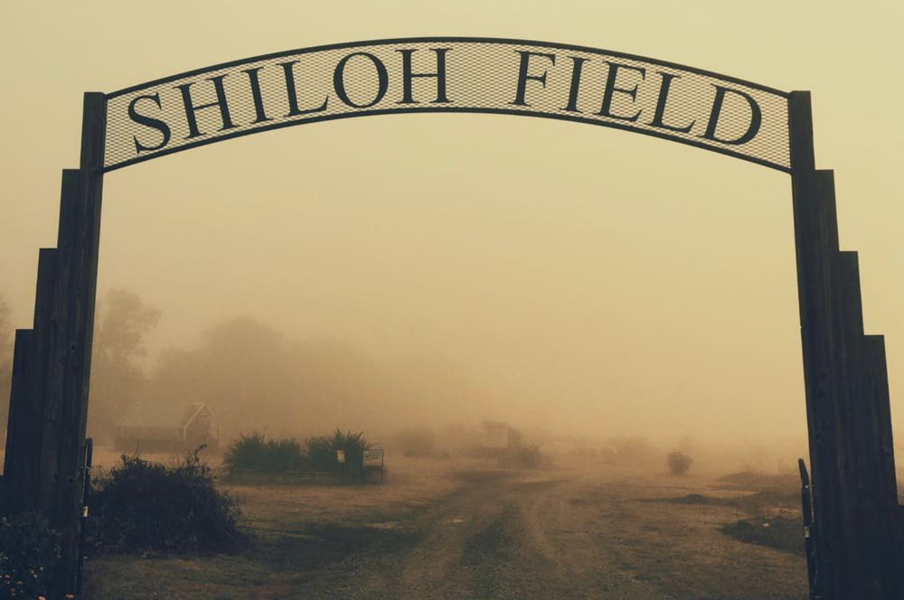 @bobhedlund with some beautiful fog at Shiloh Field. Have a great week, everyone!