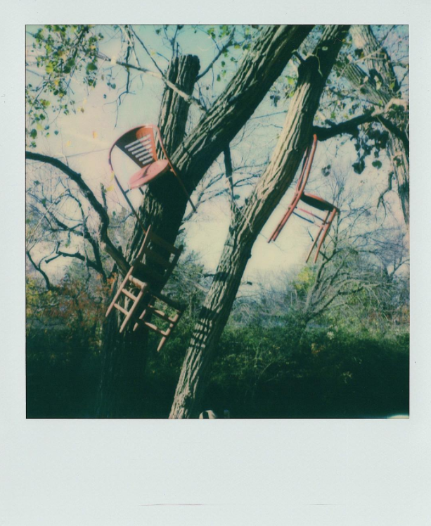 @instantdenton with a Polaroid at The Chairy Orchard.