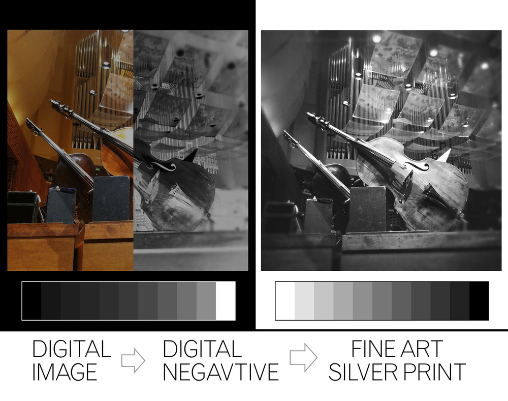 Digital Negative to Silver Gelatin