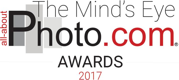 AAP-Awards-2017-928x417-1.png