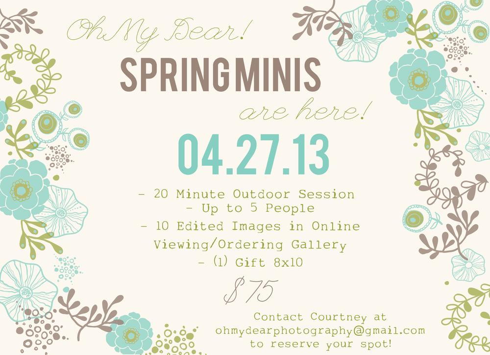SpringMiniFlyer2013.jpg