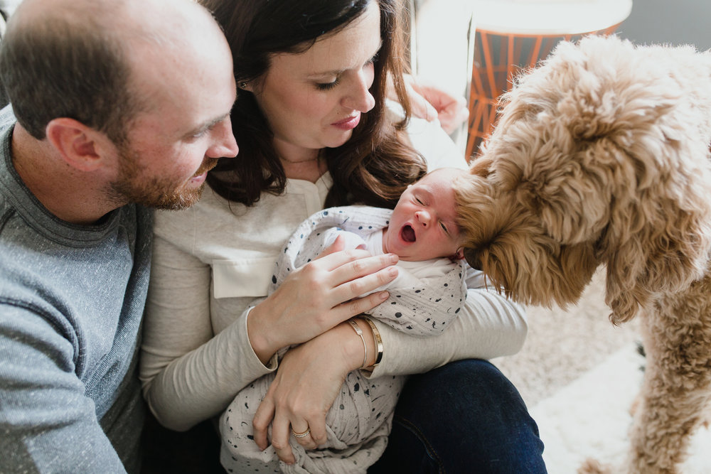 Family_Photographer_Oklahoma_Fur_babies_Newborn_Wrap.JPG