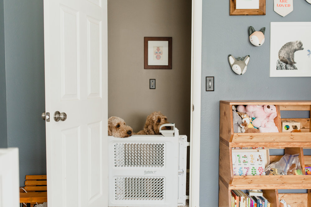 Fur_Babies_Newborn_Lifestyle_Photographer_OKC_Nursery_Gender_Neutral.JPG