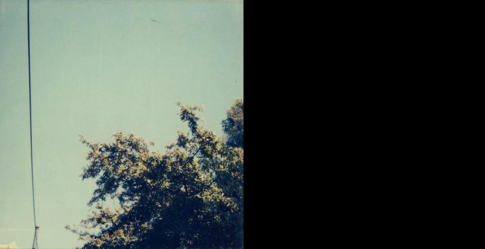 ToddRichardson-Polaroids.png