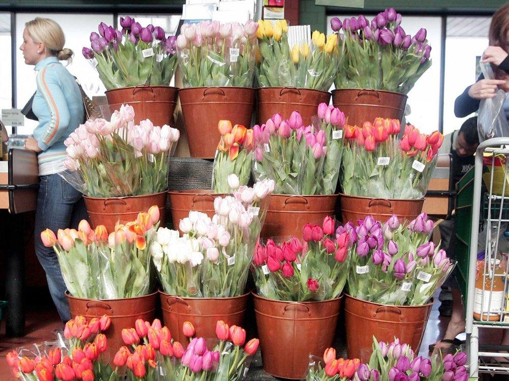 flowers-tulips-supermarket-grocery-1.jpg