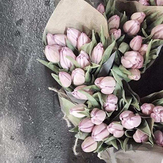 tulips in paper.jpg