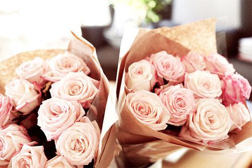wrapped roses.jpg