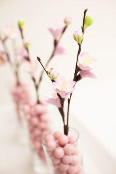 flowering branch.jpg
