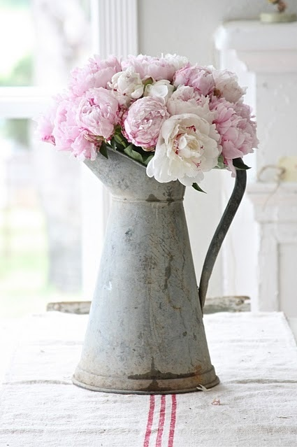 peony in pitcher.png