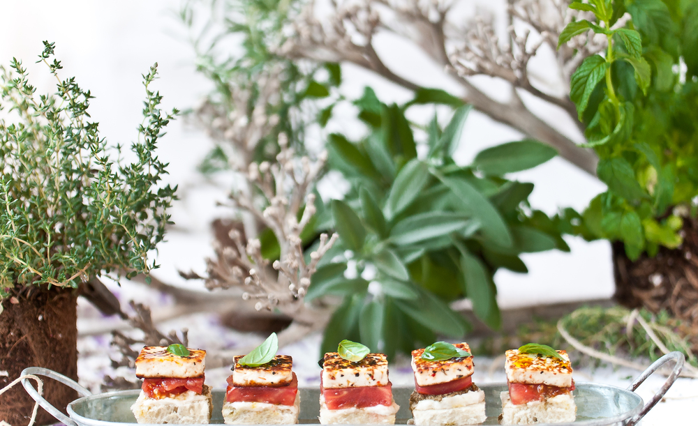 Grilled Halloumi & L'ekama Sandwich