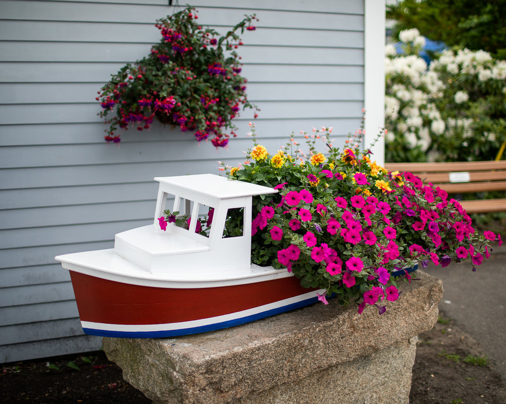 A beautiful display of flowers in the Kennebunkport town center.