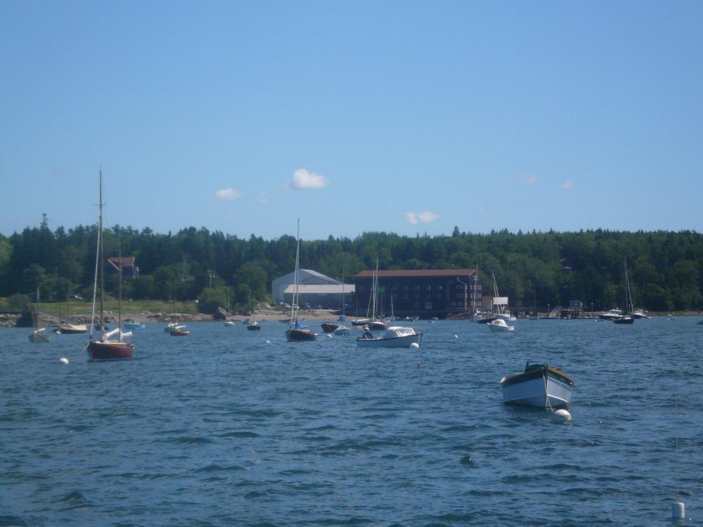 Lots of pretty boats.