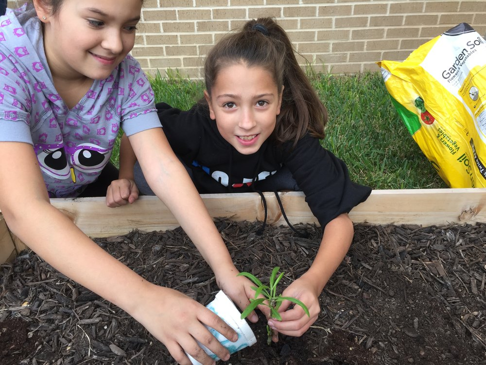 Growing Healthy Schools Project School Garden Colonial Hills El in SA.jpeg