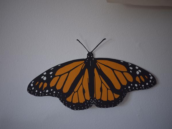 monarch_butterfly_cut_5.jpg