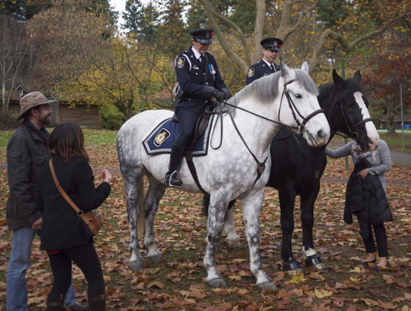 VPD Mounted Squad