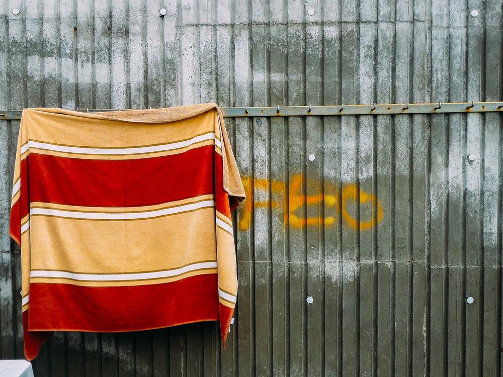 P1090528_20110827_©MarshallKappel.jpg