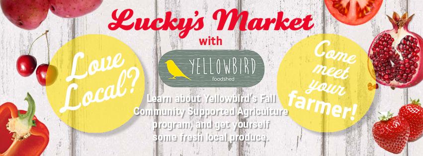 yellowbird_fallcsa_banner 2.jpg