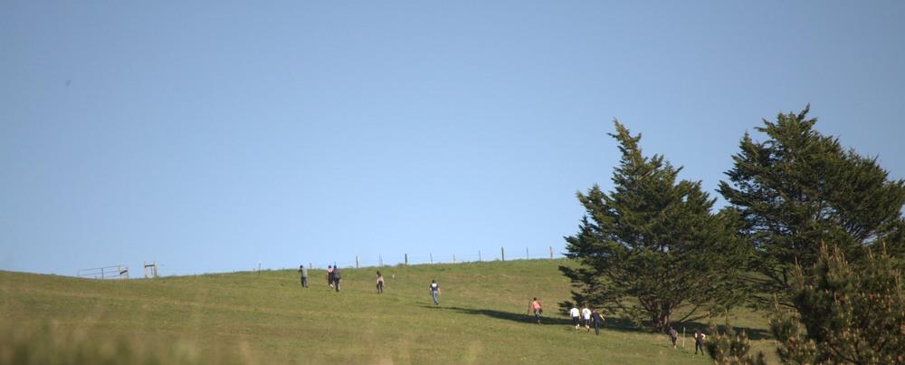 YA-Hills
