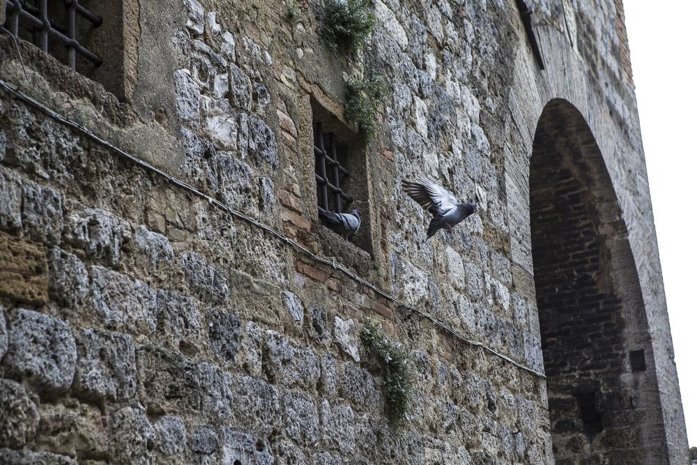 San Gimignano-19.jpg