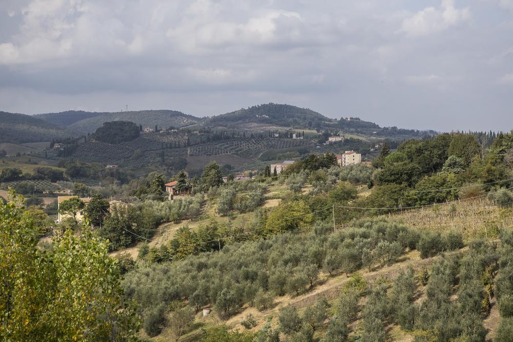 San Gimignano-24.jpg