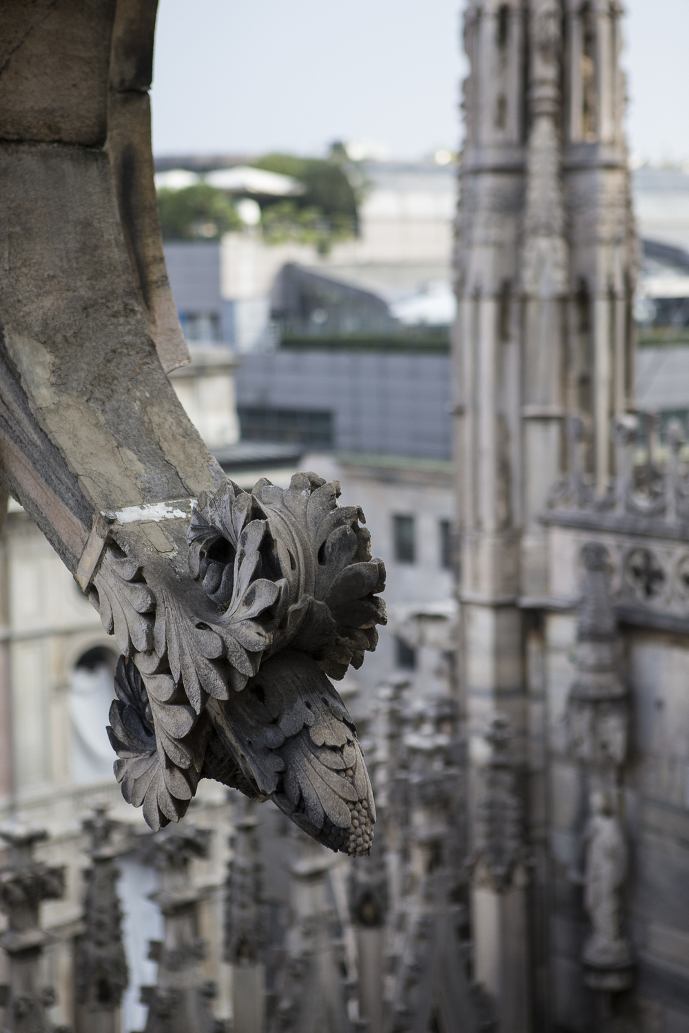 Milan Cathedral Outside-17.jpg