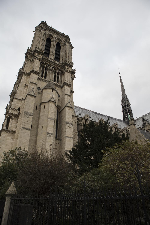 Notre Dame-14.jpg