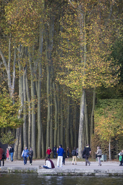 Gardens of Versailles-17.jpg