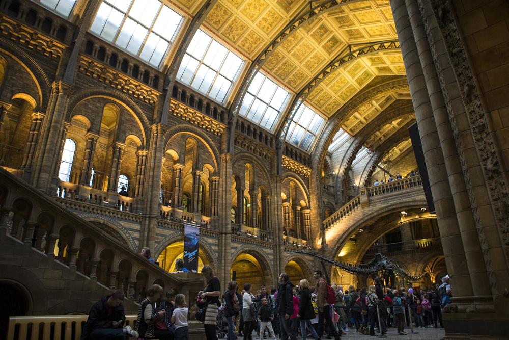 London Walk and Natural History Museum-19.jpg