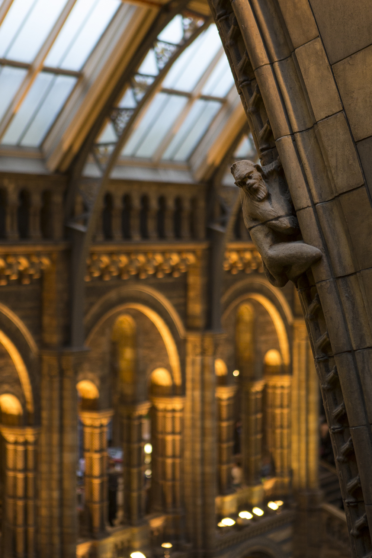 London Walk and Natural History Museum-23.jpg